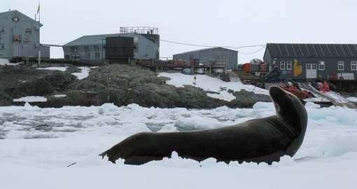 Харьковчане-спартанцы отправляются в Антарктиду