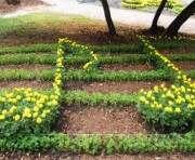 В харьковском саду вырастут цветочные ноты