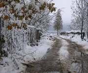 Погода в Харькове: температурные перепады