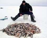 Как помочь рыбе в водоемах дожить до весны