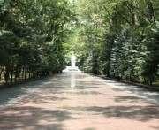 В Харькове выбирают место для установки памятного знака воинам АТО