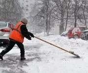 Сколько снега вывезли из харьковских дворов