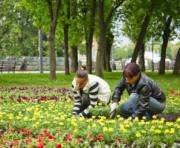 В Харькове привлекают студентов