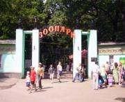 Посетить Харьковский зоопарк можно за полцены