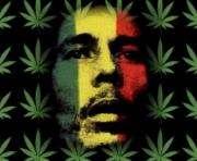 В США выпустили сорт марихуаны в честь Боба Марли