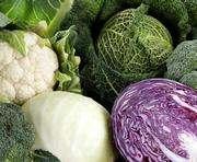Украина запретила импорт капусты и салата из Испании