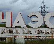 В Чернобыльской зоне хотят создать заповедник