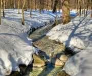 Погода в Харькове: зима не спешит сдаваться