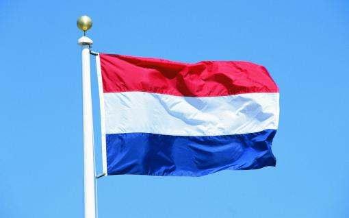 Завершен предварительный подсчет результатов референдума в Нидерландах