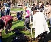 В Харькове уже высадили полтысячи деревьев