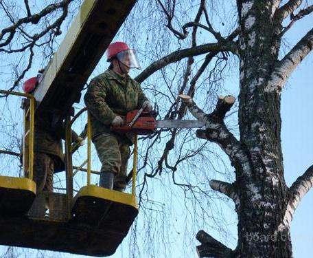 В Харькове заканчивают ликвидировать последствия стихии