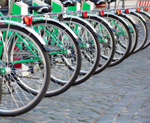 В Харькове велосипедистам рекомендуют не пристегиваться к деревьям