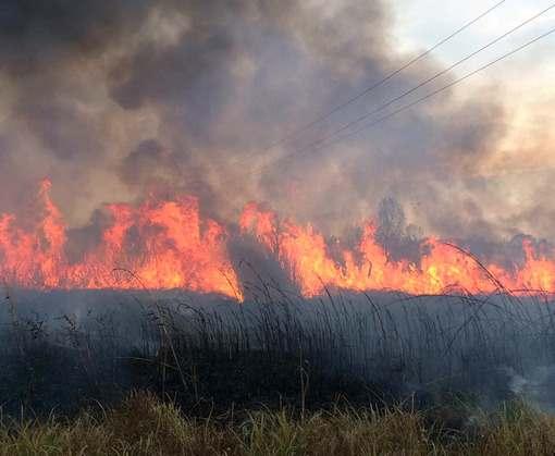 В Харьковской области загорелась трава