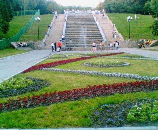 Студенты из 13 стран мира приехали познакомиться с Харьковом