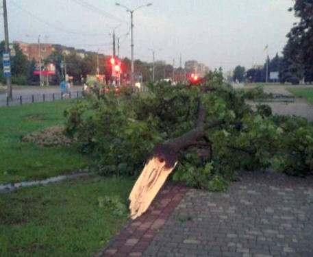 Очередная буря в Харькове: коммунальщики подсчитывают убытки (видео)