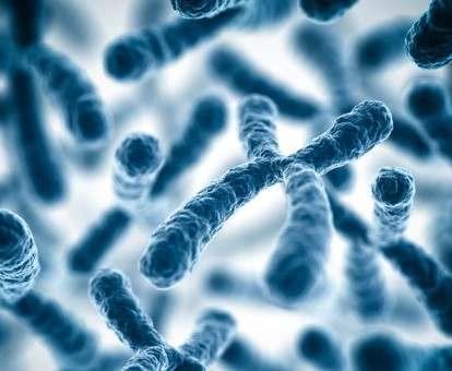 Биологи нашли 15 «депрессивных» генов