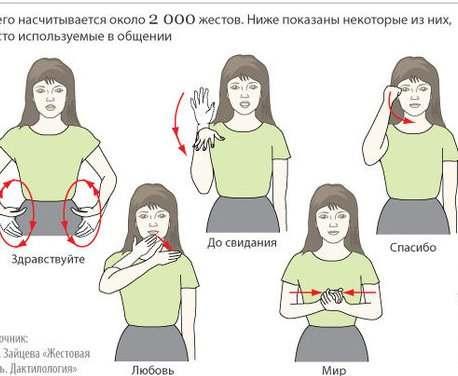В Харькове работники социальных учреждений учат язык жестов