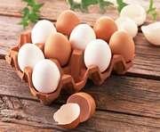 Куриное яйцо содержит самые ценные белки