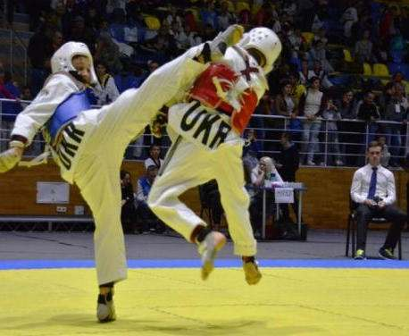 В Харькове состоялся масштабный турнир по олимпийскому тхэквондо