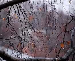 Погода в Украине: и снова осень