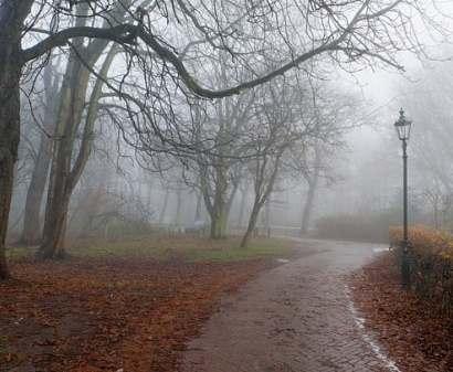 Погода в Харькове: чуть выше нуля