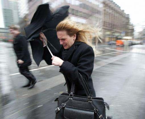 Спасатели предупреждают харьковчан о шквальном ветре