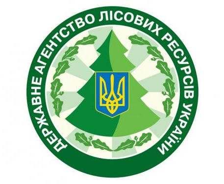 В Украине ввели меры по охране хвойных насаждений перед новогодними праздниками