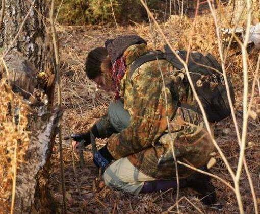 В Харьковской области сделают перепись населения бобров