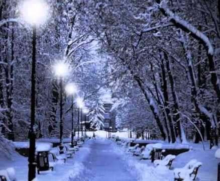 Погода в Харькове: метель