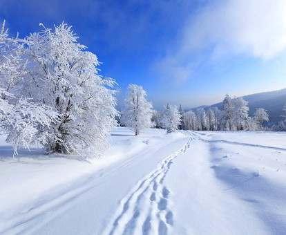 Погода в Харькове: грядут резкие изменения