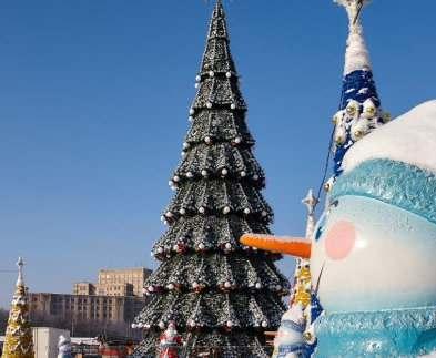 Стало известно, где в Украине самая высокая новогодняя елка