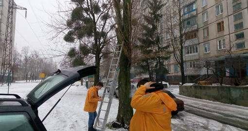 В Харькове животных спасают и таксисты, и ITшники, и пенсионеры
