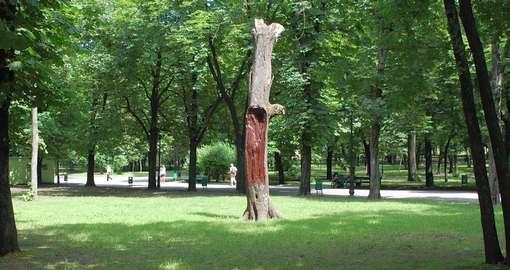 Эко-реестр в Харькове: обнаружились тайны сада Шевченко