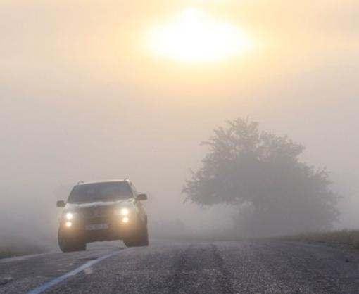 Харьковскую область накроет туман
