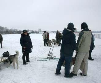Под Харьковом будут ездить на собаках