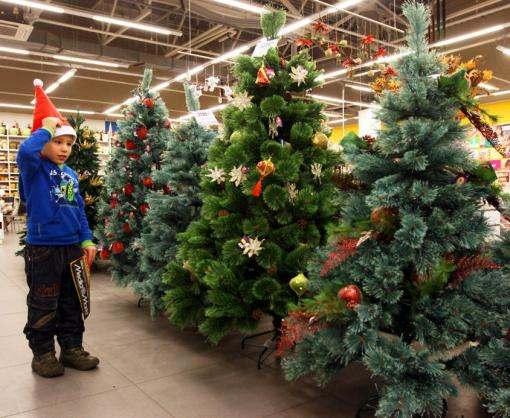 Сколько денег украинцы потратили на новогодние елки