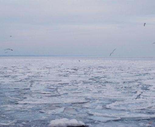 В Болгарии впервые с 1954 года замерзло Черное море: видео