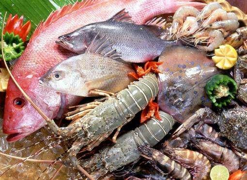 В Украине подорожают рыба и морепродукты