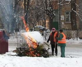 Коммунальные предприятия будут отапливать елками