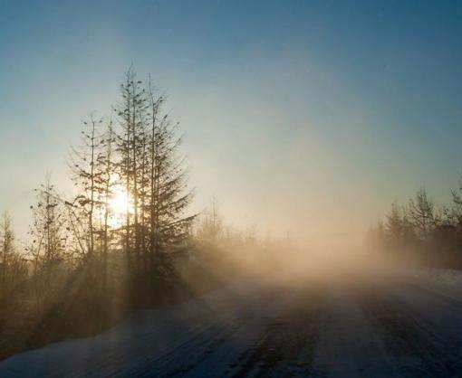 Погода в Харькове: морозы возвращаются