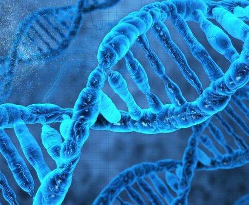 Ученые получили добро на редактирование человеческого генома