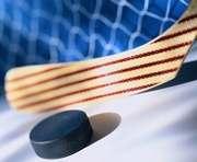 «Витязь» не выехал на матч в Кременчуг из-за болезни игроков