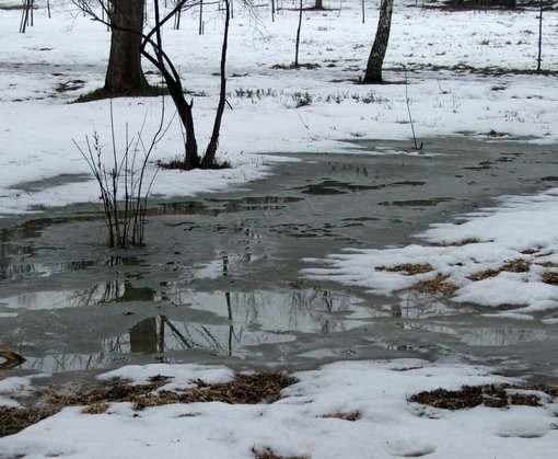 Погода в Харькове: выше нуля, но не очень высоко
