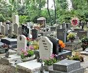 Под Харьковом на кладбище нашли тело младенца