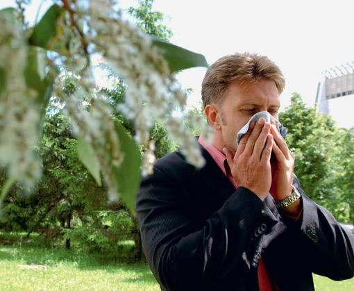 Каких растений боятся аллергики