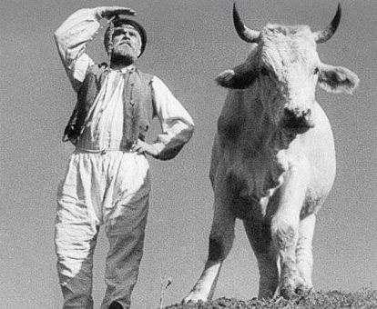 «Землю» Александра Довженко покажут на американском кинофестивале