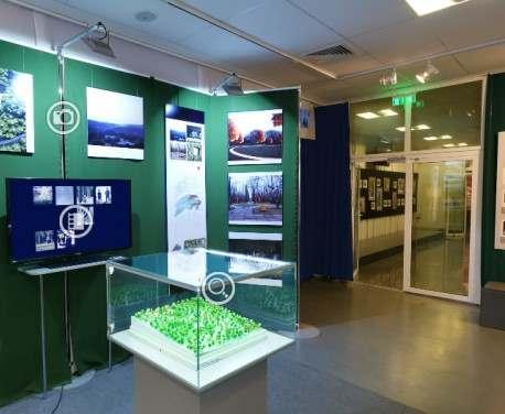 Открылась виртуальная выставка «Бабий Яр: память на фоне истории»