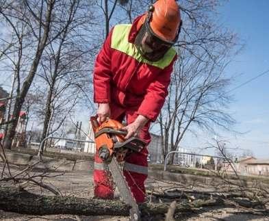 В Харькове занимаются ликвидацией последствий зимы во дворах