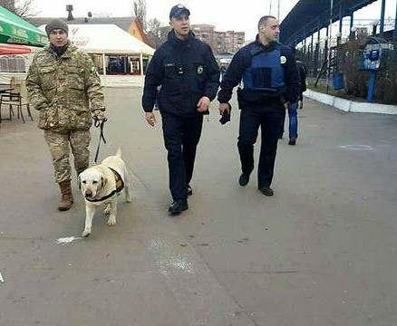 Что искала полиция на «Леваде»