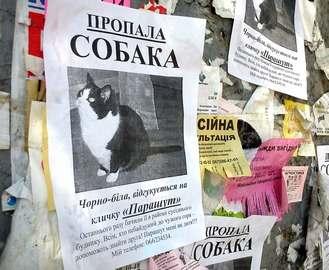 В Харькове орудуют «собачьи мошенники»